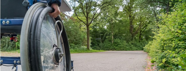 An image of a person pushing a wheelchair on a tree-lined path. Only the hand on the rim of the wheel is visible.