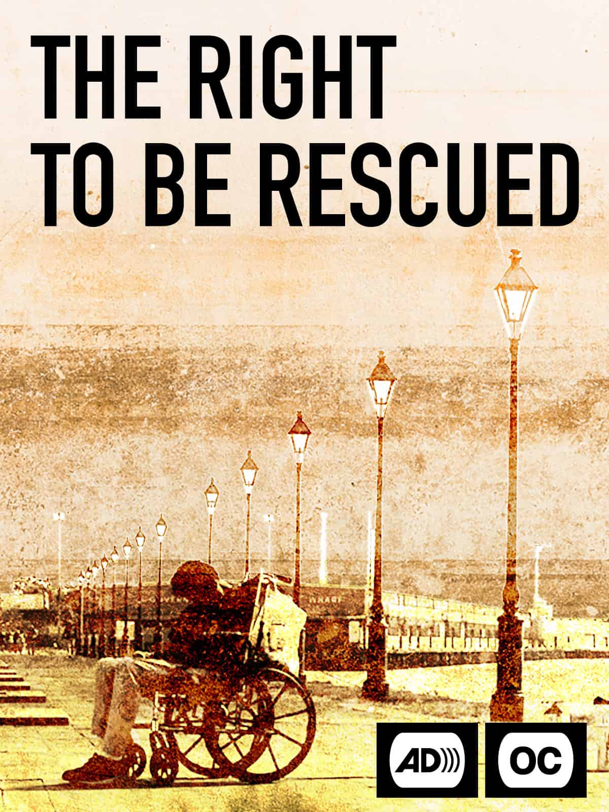 Movie poster for The Right to be Rescued